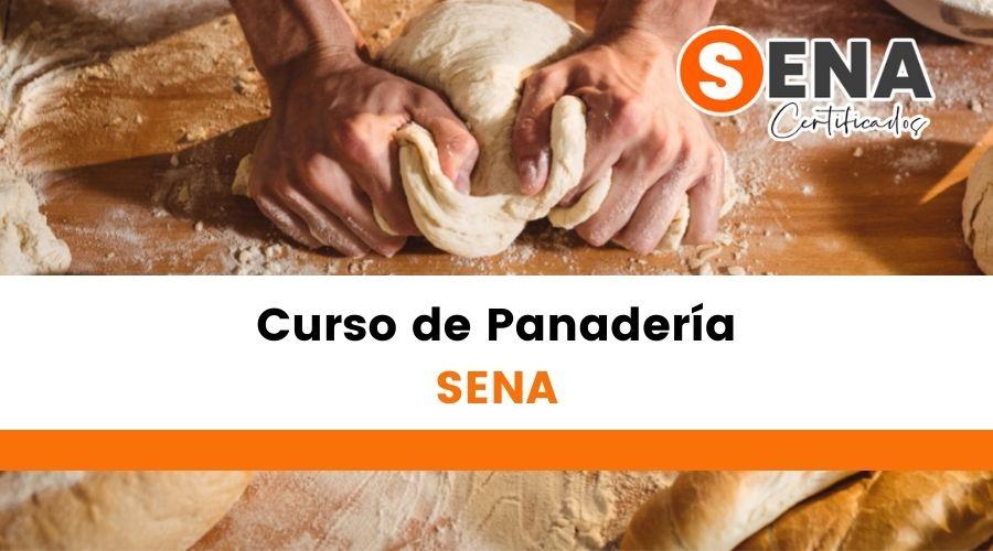 Curso De Panadería En El Sena