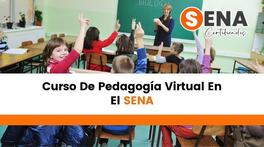Curso De Pedagogía Virtual En El Sena